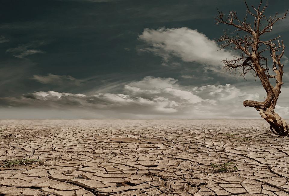 desert-279862_960_720